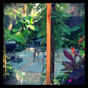 A little peek at the George Foreman I grilled my tomatoes on. Who knew you could find Birds of Paradise in Bed-Stuy?