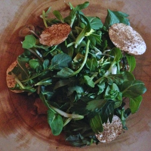 Salad #1: An original addition to the Vegetarian Farmer's Feast: Greens and chanterelles on roasted mushrooms.